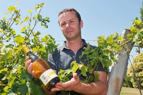 producteur et bouteille exposé au milieu d'un vignoble