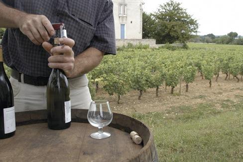 2 3 verres de vin par jour le bon quilibre pour la sant 2 3 verres de vin par jour - Quantite de vin par personne ...