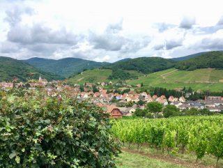 Le Tour de France sur la route des Vins d'Alsace