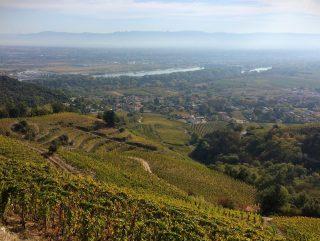 Rhône Nord : La règle du 9 confirmée