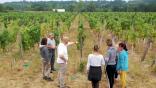 Trophées Bordeaux Vignoble Engagé – Vignobles Rousseau